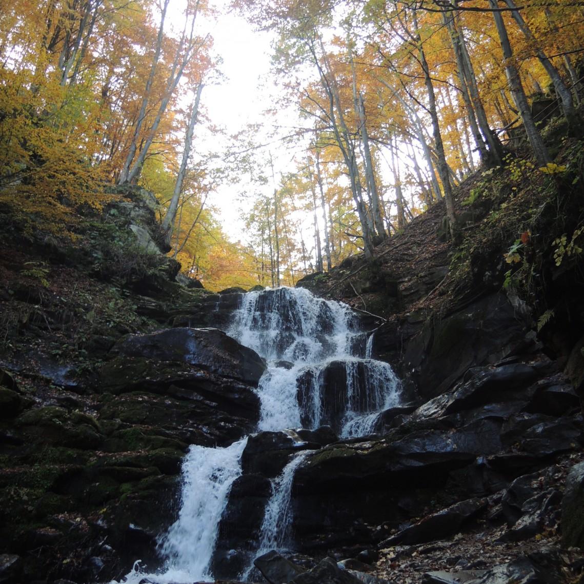 Карпаты. Украина. Водопад Шипот. Осень 2015