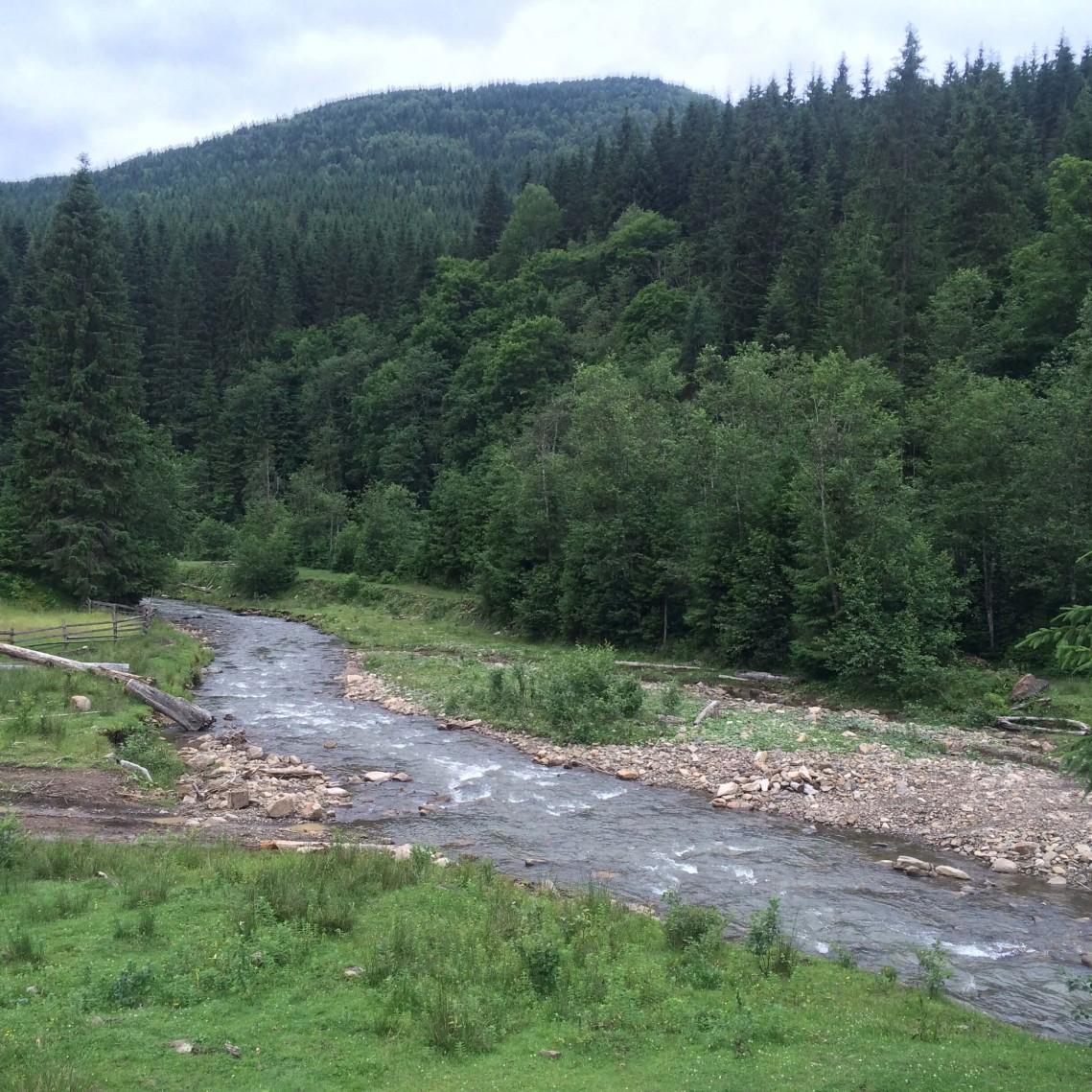 Река Салатрук, недалеко от Быстрицы. Горганы