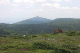 Вершина горы Гропа